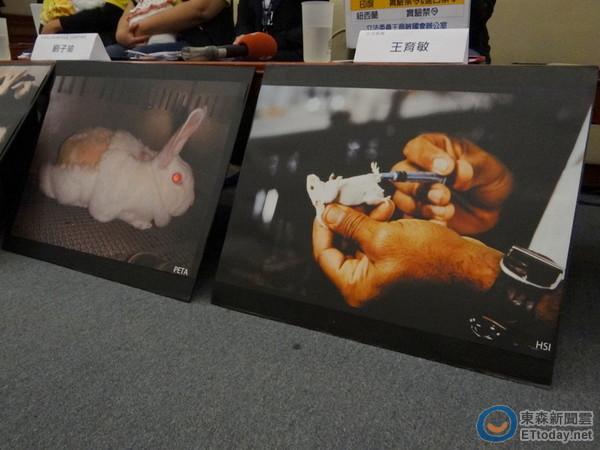 七成民众反对化妆品动物实验 王育敏:欧盟都禁止了