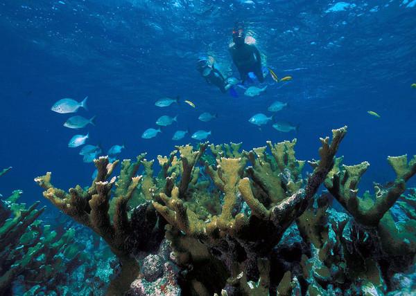 潜入海底沉船,探寻地球皱纹!美国7座必游国家公园