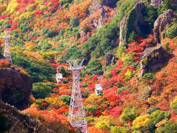 去日本四国小豆岛,搭寒霞溪公园山间缆车,欣赏整个山头的枫红(图/东