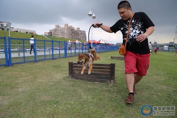 毛細路亦都要放風!精選6座雙北市寵物公園  [集旅遊資訊廣益),香港交友討論區