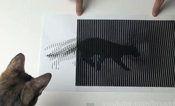 透过黑白条纹间隔遮掩,可使观看者产生视觉暂留的现象.