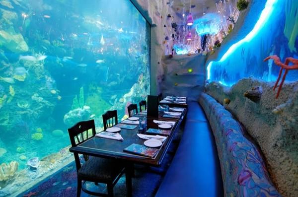 印度首座水底餐厅是超大水族馆!4000种海底生物陪用餐