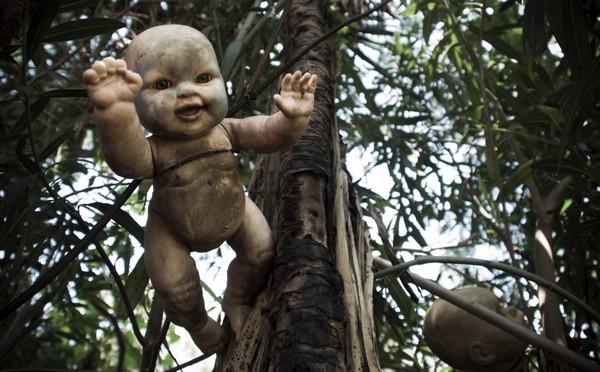 墨西哥的恐怖「娃娃島」,陰森詭異,讓人毛骨悚然。(圖/翻攝自網路) 國際中心/綜合報導 外媒報導,墨西哥首都墨西哥城外的霍奇米爾科(Xochimilco)運河上,有個恐怖的「娃娃島」(the Island of Dolls,西班牙語:La Isla de las Muñecas),島上的樹掛滿數以千計的廢棄洋娃娃,陰森詭異,讓人毛骨悚然。 根據當地傳說,20世紀的50年代,島上一名叫桑塔納(Don Julian Santana)的居民發現一名小女孩溺死在運河裡,她的洋娃娃卻飄浮在水面上。桑