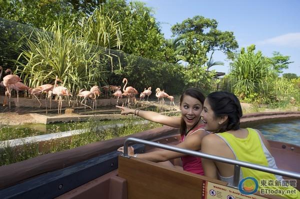 欲前往新加坡动物园,夜间动物园及河川生态园的民众,皆可搭乘地铁至