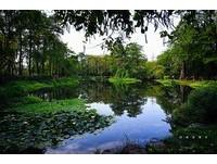 高雄忘憂森林-大東濕地公園(圖/高雄記事本粉絲專頁授權提供,請勿隨意翻攝)  註:後續如要使用請務必超連結回到該粉絲專頁
