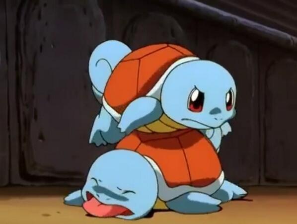 可爱的杰尼龟(图/翻摄於
