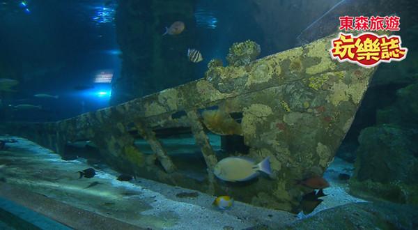 水族馆布景设计放入沉船与飞机残骸模型 关岛海底世界相当适合亲子