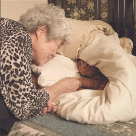 是奶奶的小可爱,躲在被子里卖萌,一起看窗外的