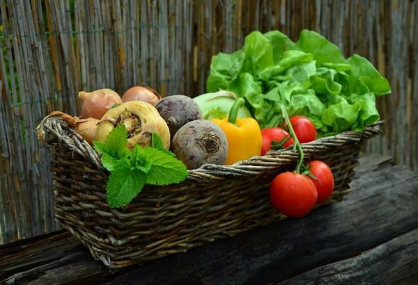 蔬菜,蔬果。(圖/取自librestock網站)
