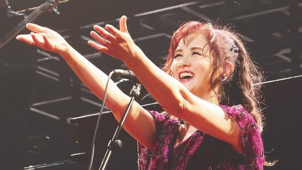 小刚的日本音乐风暴区/中岛美雪经典作再掀讨论