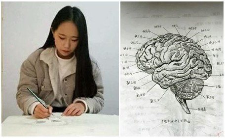 「气质女大生」手绘人体解剖图超精致 网:这是印的吧!