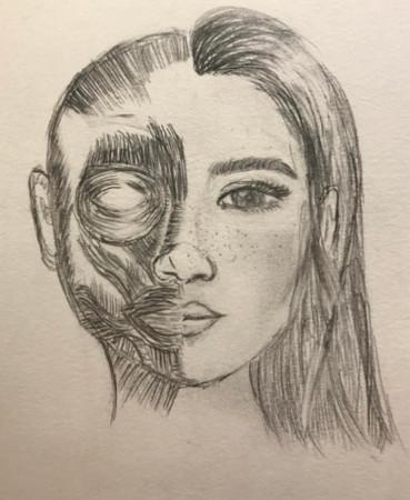 沈月连po 3张人体肌肉,面部手绘素描图,虽然成果尚称不上专业,但她