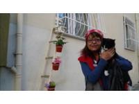 ▲暖心!婦人做「窗戶階梯」 讓浪貓在寒冬中能入屋取暖。(圖/翻攝自The Dodo)