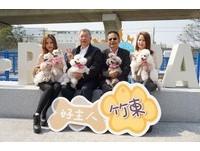 新竹寵物公園(圖/新竹縣政府提供)
