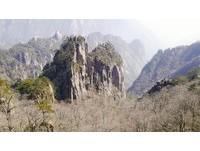 安徽黃山。(圖/記者李依琳攝)