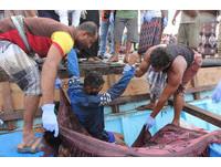 難民在葉門遭阿帕契攻擊死亡。(圖/路透社)