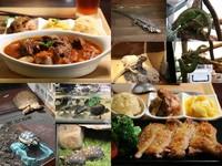 ▲胖鬣蜥原味廚房餐點。(圖/記者華少甫攝)