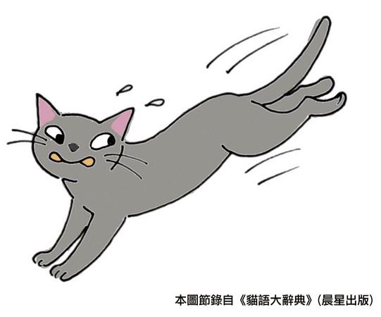 猫抓矢量图