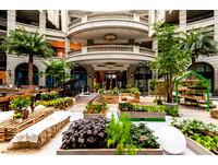 ▲寶麗廣場中庭最新Urban Garden布置。(圖/BELLAVITA提供)