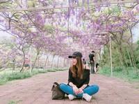 紫藤咖啡園。(圖/網友ig yoyolee_food 提供,請勿任意翻攝,以免侵權)