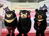 華航推「三熊友達號彩繪機」5/26啟航。(圖/記者賴文萱攝)