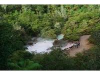 ▲紐西蘭歐拉奇科拉科地熱公園(圖/記者陳涵茵攝)