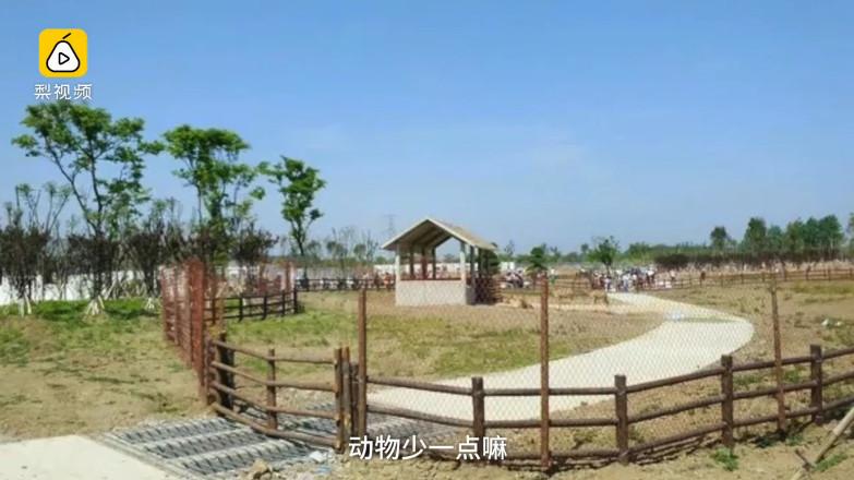 大陆中心/综合报导 安徽宿州野生动物园4月底新开幕,游客却败兴而归