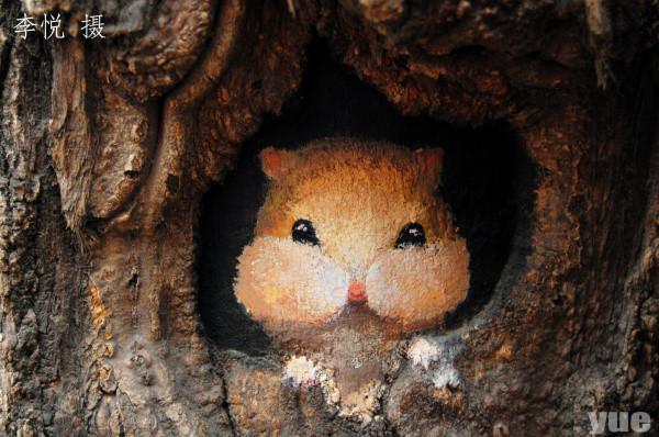 小浣熊探出头… 河北美途女孩「树洞画」点缀城市