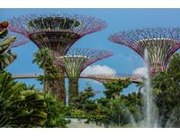 新加坡旅遊-濱海灣花園(圖/記者林世文攝)