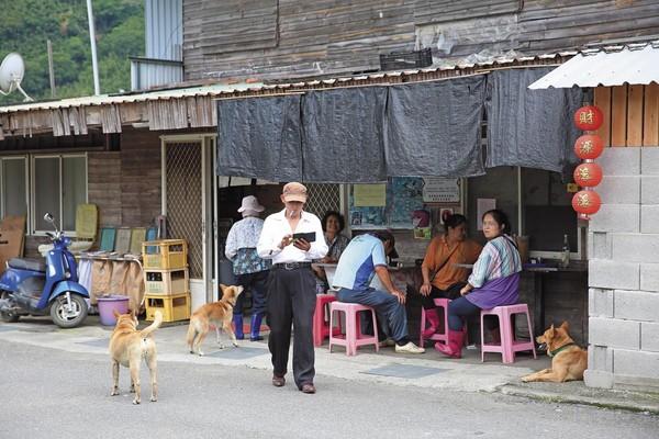 為了防蛇護家,家家戶戶爭相養狗,導致村落中的犬隻數量大增。
