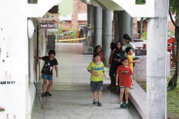 眼鏡蛇大舉來襲也侵入校園,嚴重影響學童安全。