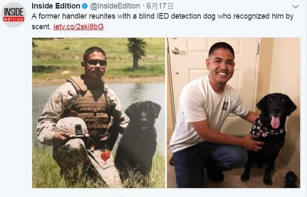 分別6年...一「聞」就認出你 失明軍犬開心與拍檔重逢。(圖/翻攝自「Inside Edition」/David Herrera臉書)
