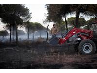 ▲▼西班牙森林大火波及國家公園 1500人疏散。(圖/路透社)