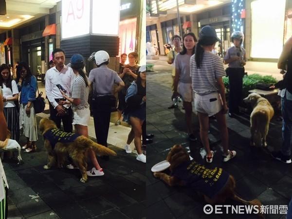 ▲蕭亞軒為了救狗,在信義區爆發爭執。(圖/網友Kaori Sugi授權提供)