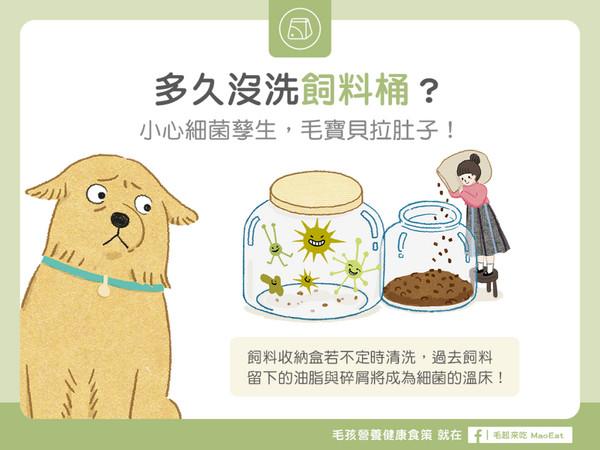 多久沒洗飼料桶?小心細菌孳生,毛寶貝拉肚子!(圖/毛起來 MaoUp)
