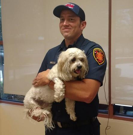 ▲消防員救醒火災受困狗。(圖/翻攝自Bakersfield Fire Department)