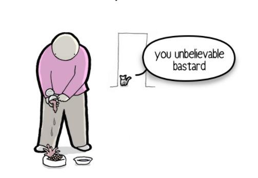▲▼「貓砂盆不准有大便」 貓咪寫給主人的信:這5點很重要。(圖/翻攝網站/iizcat)