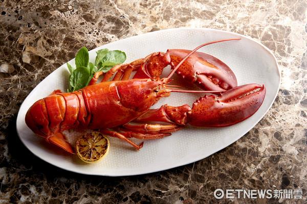 只要一天 莫爾頓牛排館8/18推出0.9公斤重的波士頓龍蝦