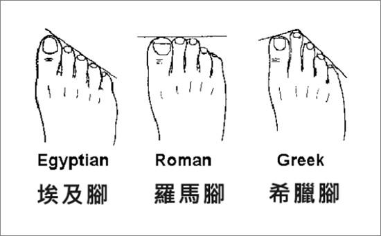 ▲三種腳型示意圖。(圖/Bonjour女鞋提供)