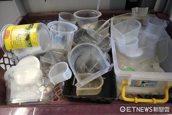 ▲▼台北野鳥救傷中心,雛鳥餵食器,實用器皿,黃色液體是維他命,泥狀飼料。(圖/記者戴榕萱攝)