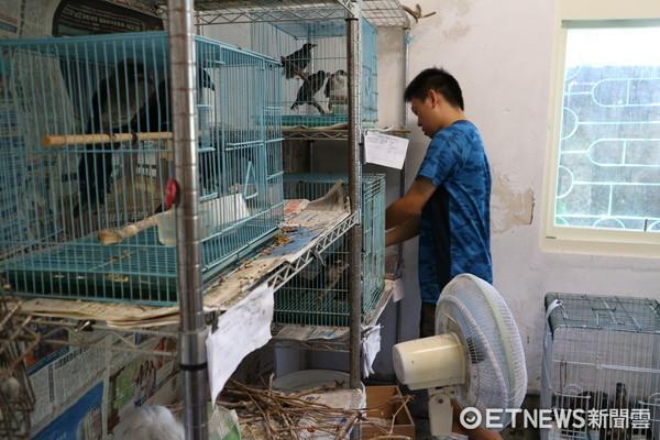 ▲▼台北野鳥救傷中心,志工。(圖/記者戴榕萱攝)