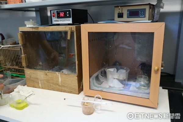 ▲▼台北野鳥救傷中心,救傷表單,器材,雛鳥保溫箱。(圖/記者戴榕萱攝)