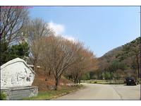 ▲韓國美里川聖地。(圖/小不點Paine提供)