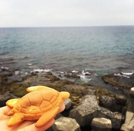 ▲小琉球 海龜燒 Sea turtle pancake。(圖/IG@wujanejane提供,請勿恣意翻攝以免侵權)