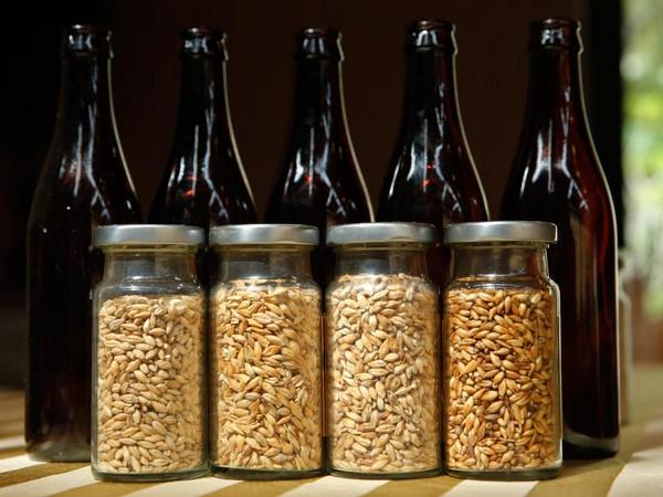 啤酒花與巨細麥芽的用處,也是說出課內容一單方面。