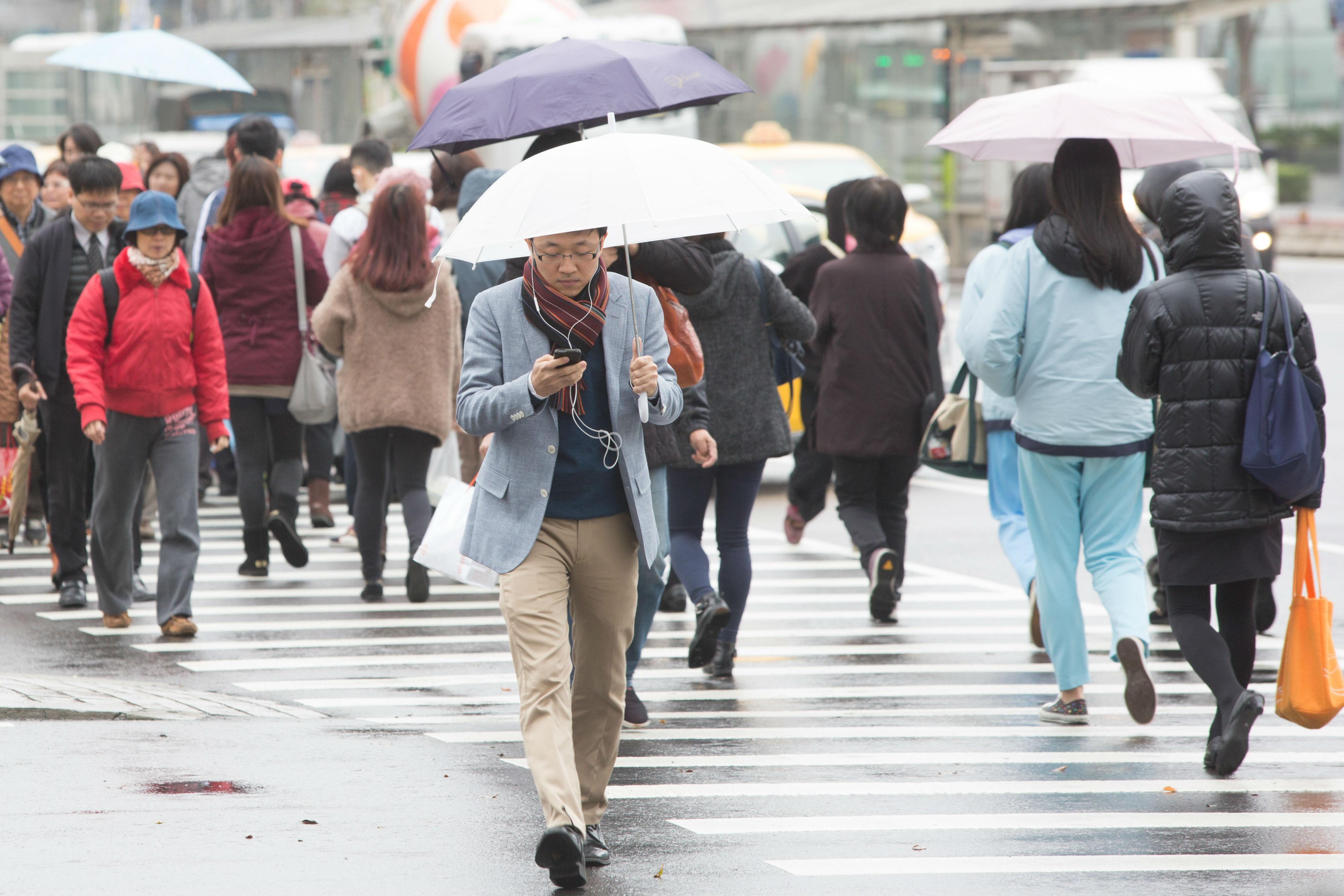 ▲滑手機,低頭族,下雨,溼冷,雨天,冬季,冬天,天氣,低溫,寒流,行人,過馬路,交通,斑馬線,路人(圖/記者季相儒攝)