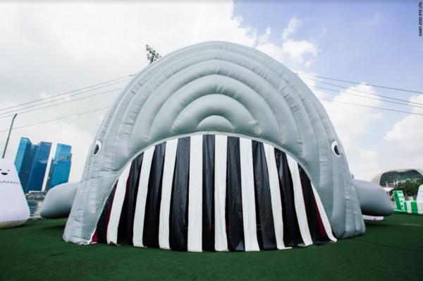 鲸鱼球池,微笑大蜘蛛超萌 高雄新景点「气垫动物园」12月登台