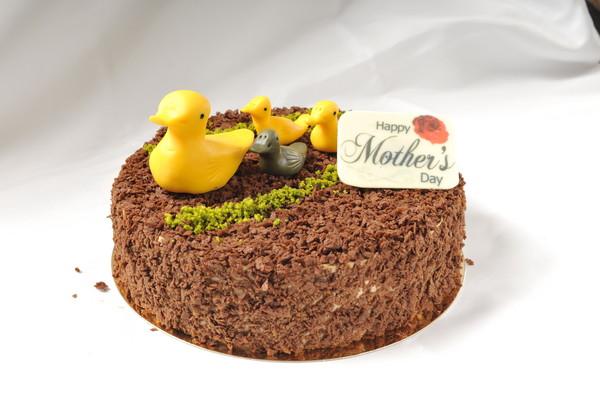 平价五星级冠军蛋糕 母亲节优惠讨好妈咪味蕾