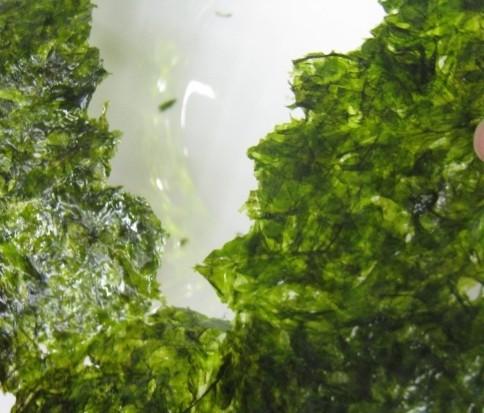 ▼撕开海苔的喀滋声响,代表著海苔原料丰富,新鲜度高不易软化.