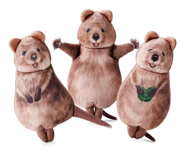 全世界最会自拍的动物!短尾矮袋鼠变成收纳袋,可以带回家啦